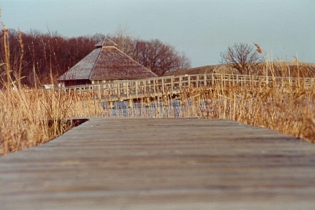 Crosswinds Marsh